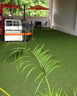 ARTIFICIAL GRASS PROJECT CASE